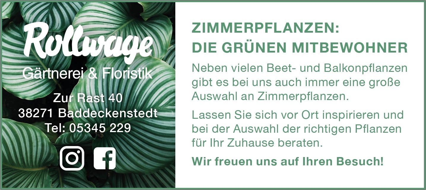 Grünpflanzen - Voll im Trend